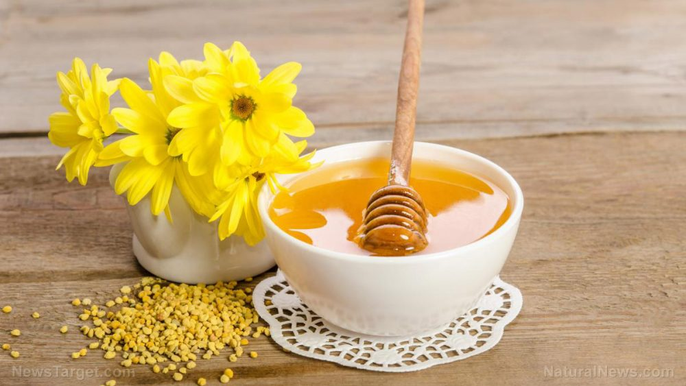 "Bee pollen proven to be a ""treasure trove of active natural metabolites"" that benefit human health"