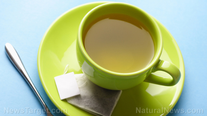 Drink green tea to improve gut health and fight obesity