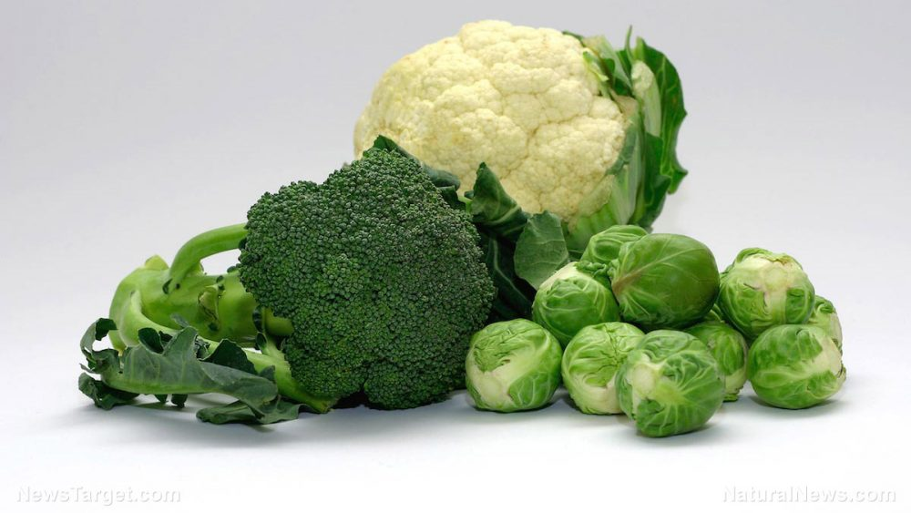 Sulforaphane, a compound in cruciferous vegetables, found to kill colon cancer cells