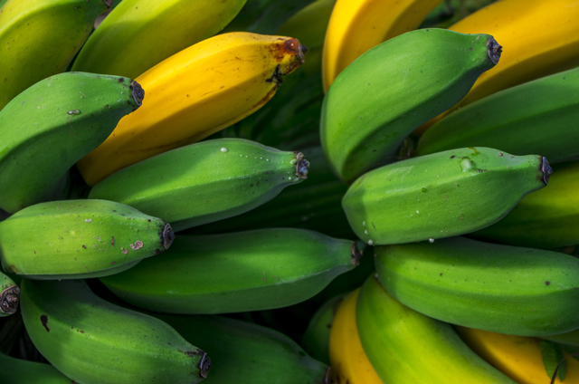 A banana a day can keep depression at bay, says research