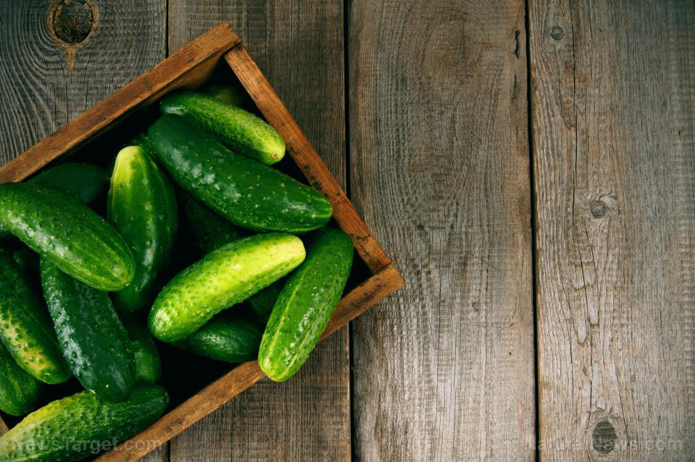 4 Reasons to add CUCUMBERS to your diet