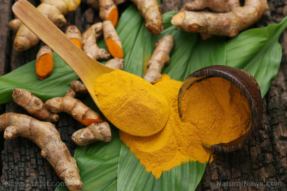 Prevent stomach cancer with curcumin, one of the most potent cancer-fighting agents on the planet